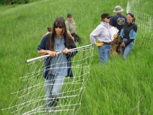 Workshop participants set up a temporary paddock utilizing electrified netting and polywire. Submitted photo.